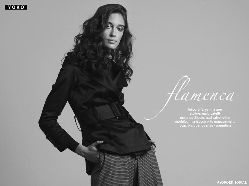 flamenca_ymtitulo